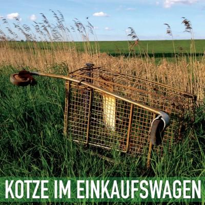 kotze_wuu_cover_800